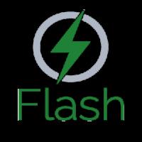 flash-300x300